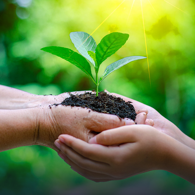 sustainability_environment